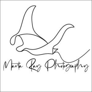 Manta Ray Photography